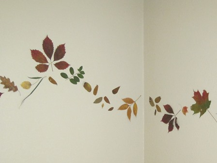 pressed leaves on wall