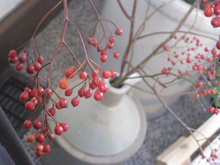 berries in stoneware jug