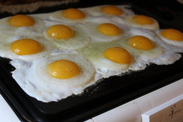 eggs_7514