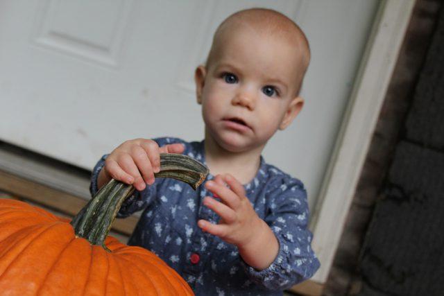 my-pumpkin_9012